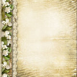 Vintage background with spring flowers Royalty Free Stock Images