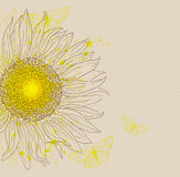 Vintage background with sunflower Royalty Free Stock Photo
