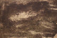 Vintage background texture Stock Image