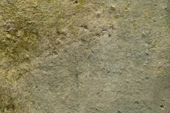 Background, vintage texture of old mold concrete stock photo