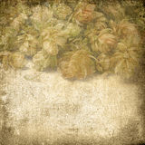 Vintage background with texture of paper for any of your design Royalty Free Stock Images