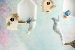 Vintage background with toy birds Stock Photos