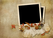 Vintage background with victorian card and rose Stock Photos
