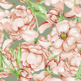 Vintage background with watercolor wild roses Stock Image