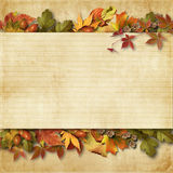 Vintage Background With Autumn Leaves With Place For Text And Ph Stock Photo