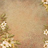 Vintage Background With Frames And Flowers Stock Photo