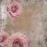 Vintage Background With Roses Stock Image