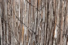Vintage bamboo rattan close-up of a dilapidated retro worn fence held together with rusted wire a background texture. In shades of tan, beige, orange color and royalty free stock photography