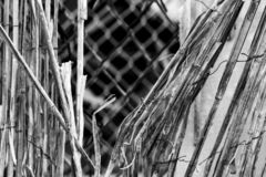 Vintage bamboo rattan close-up of a dilapidated retro worn fence held together with rusted wire, chain link fence in background, b. Vintage bamboo rattan close stock images