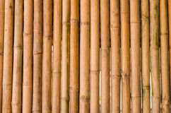 Vintage Bamboo wall background. Vintage Bamboo wall as texture or background Stock Photo