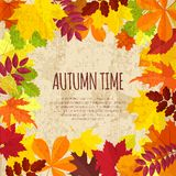 Vintage banner with autumn foliage Royalty Free Stock Images