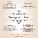 Vintage  banner template collection Royalty Free Stock Photos