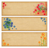 Vintage banners with flowers Stock Image