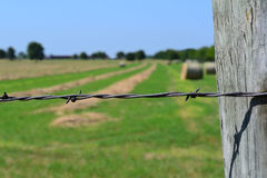 Vintage barbed wire fencing around a hay field Stock Image