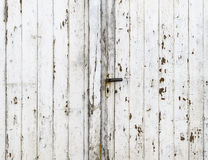 Vintage Barn Door with Exfoliating White Gloss Paint. Detail of a white gloss painted weathered vintage barn door background stock image