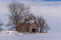 Vintage barn. Stock Photography