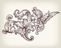 Vintage baroque floral scroll ornament vector