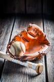 Vintage baseball glove and ball Stock Images