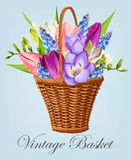 Vintage basket with flowers Royalty Free Stock Photography