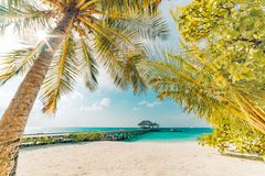Vintage beach scene. Palm trees and relaxing sea and wooden pier stock photo