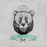 Vintage  Bear logo Royalty Free Stock Images