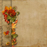 Vintage beautiful background with autumn border Stock Photo