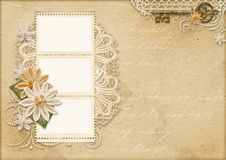 Vintage beautiful background with flowers and photo frame stock photography