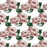 Vintage beautiful roses pattern Stock Photography