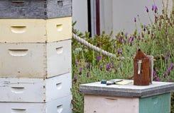 Vintage Beekeeping Equipment. Vintage beekeeping hives, smoker and equipment in a garden stock image