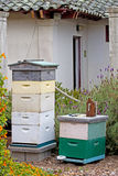 Vintage Beekeeping Garden Setting. Vintage beekeeping equipment in a charming garden setting stock image