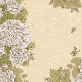 Vintage beige color decorative background of stylized flowers Royalty Free Stock Images