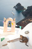 Vintage belfry, cat and seaview in Oia, Santorini, Greece Royalty Free Stock Images
