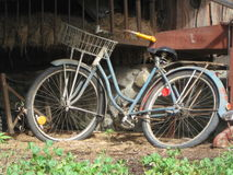 Vintage bicycle. A very old vintage bicycle sits unused in a shed Royalty Free Stock Image