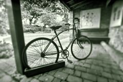 Vintage bicycle in black and white Stock Image