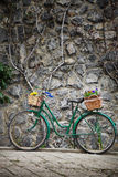 Vintage bicycle with bunches of flowers Stock Photography