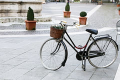 Vintage bicycle carrying flowers Royalty Free Stock Photos