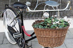 Vintage bicycle carrying flowers Royalty Free Stock Photography