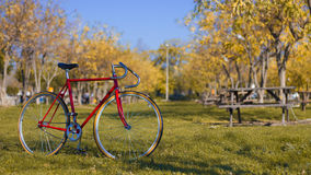 Vintage bicycle at city park Stock Images