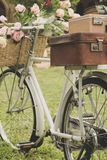 Vintage bicycle on the field Royalty Free Stock Image