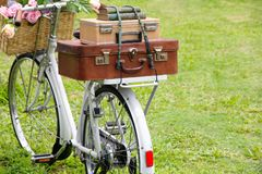Vintage bicycle on the field Stock Image