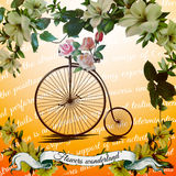 Vintage  bicycle with flower. Design for flower shop Stock Image