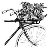 Vintage bicycle with flowers in basket bike Stock Photo