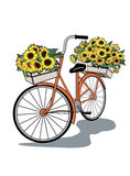 Vector vintage bicycle with flowers Stock Photo