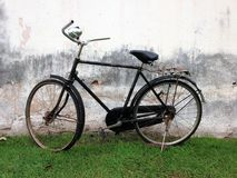 Vintage bicycle and green grass stock photo