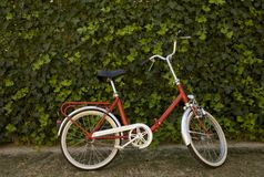 Vintage bicycle, Italian style. Old school bicycle Royalty Free Stock Photo