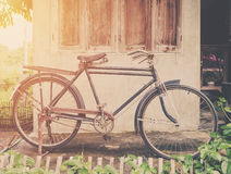 Vintage bicycle or old bicycle vintage park on old wall home Royalty Free Stock Image