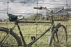 Vintage Bicycle with Old Wire Basket Royalty Free Stock Photography