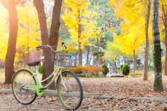 Vintage bicycle parking in autumn park. Vivid autumn leaves. Stock Photo