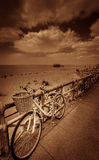 Vintage bicycle Royalty Free Stock Photos