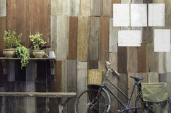 Vintage bicycle and small tree on old wood wall background Royalty Free Stock Image